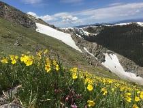 Byers Peak Wilderness Area