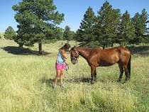 Great Escape Mustang Sanctuary Deer Trail