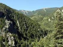 Greenhorn Mountain Wilderness Area