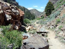 Lake Fork Recreation Trail