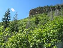 Mesa Verde Wilderness Area
