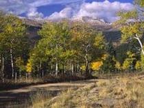 Mount Evans State Wildlife Area Idaho Springs