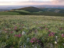 Powderhorn Wilderness Area