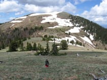 Ptarmigan Peak Wilderness Area
