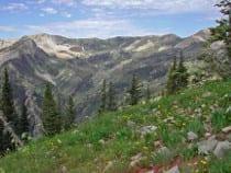Raggeds Wilderness Area