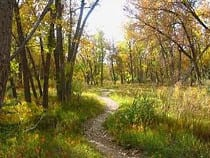 Sand Creek Regional Greenway Recreation Trail