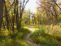 Sand Creek Regional Greenway Recreation Trail