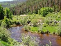 Sarvis Creek Wilderness Area