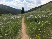 Two Elk Recreation Trail