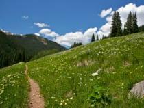 Wheeler Tenmile Recreation Trail
