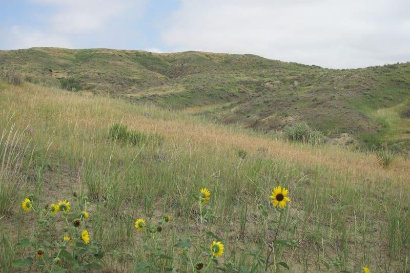 West Bijou Site Natural Landmark Colorado