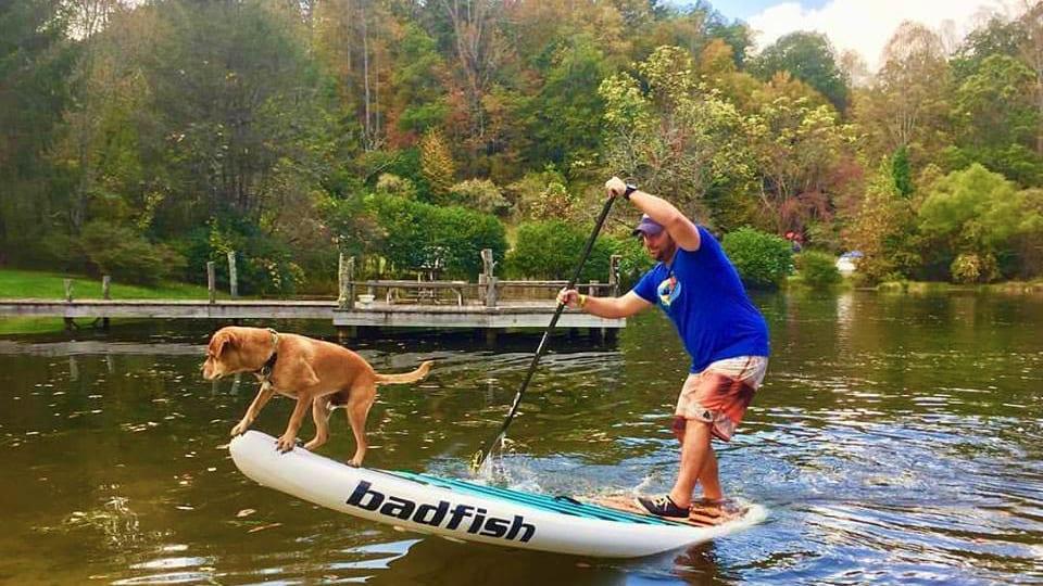 Badfish SUP Stand Up Paddle Board Dog