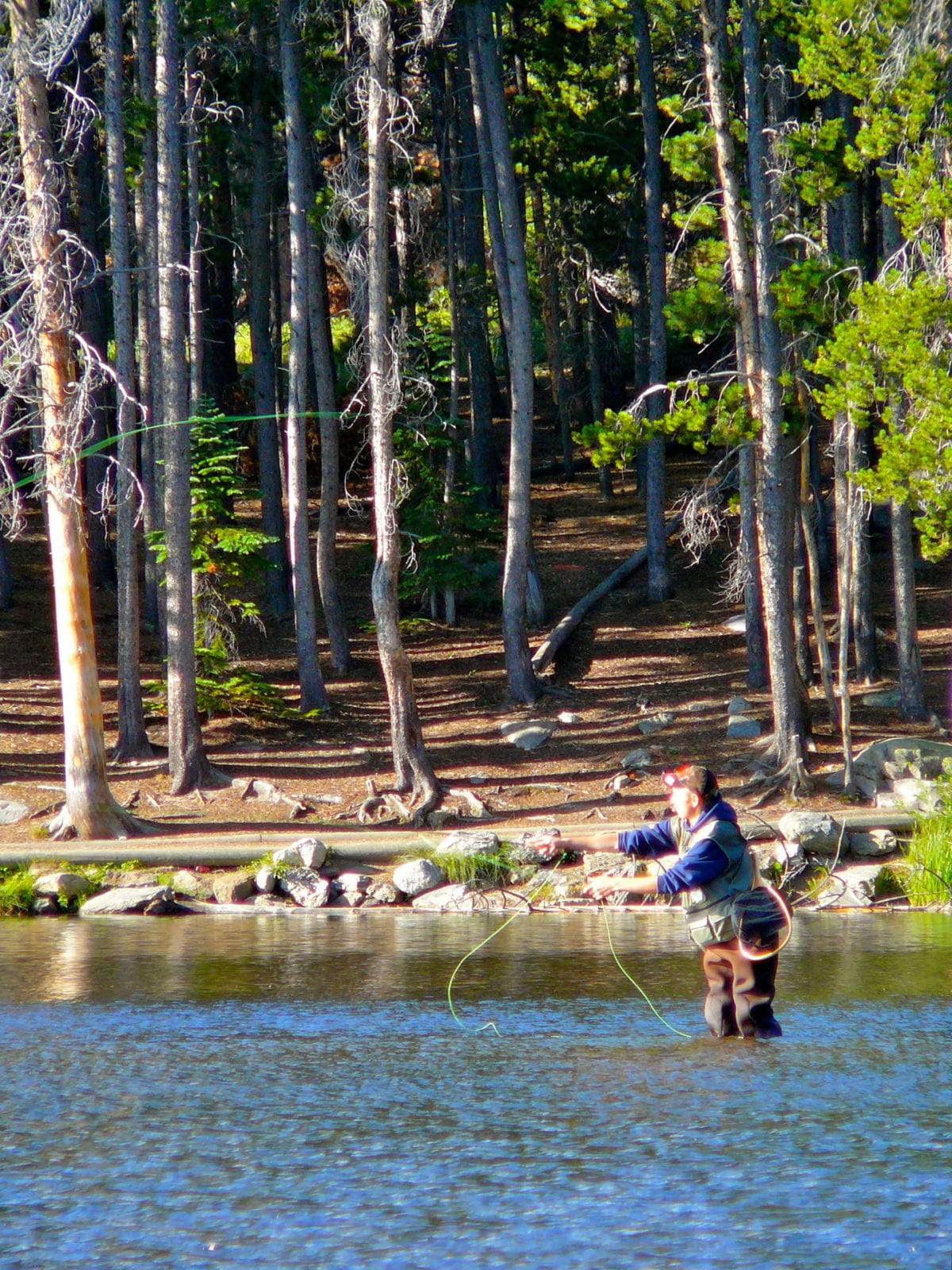 How to get started fly fishing in colorado beginner s for Fishing lakes in colorado