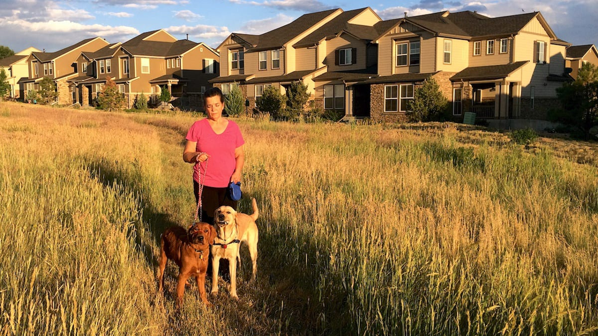 Colorado Springs Neighborhood Dog Walk