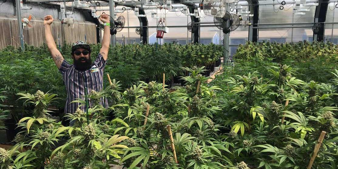 My 420 Tours Marijuana Grow House Denver