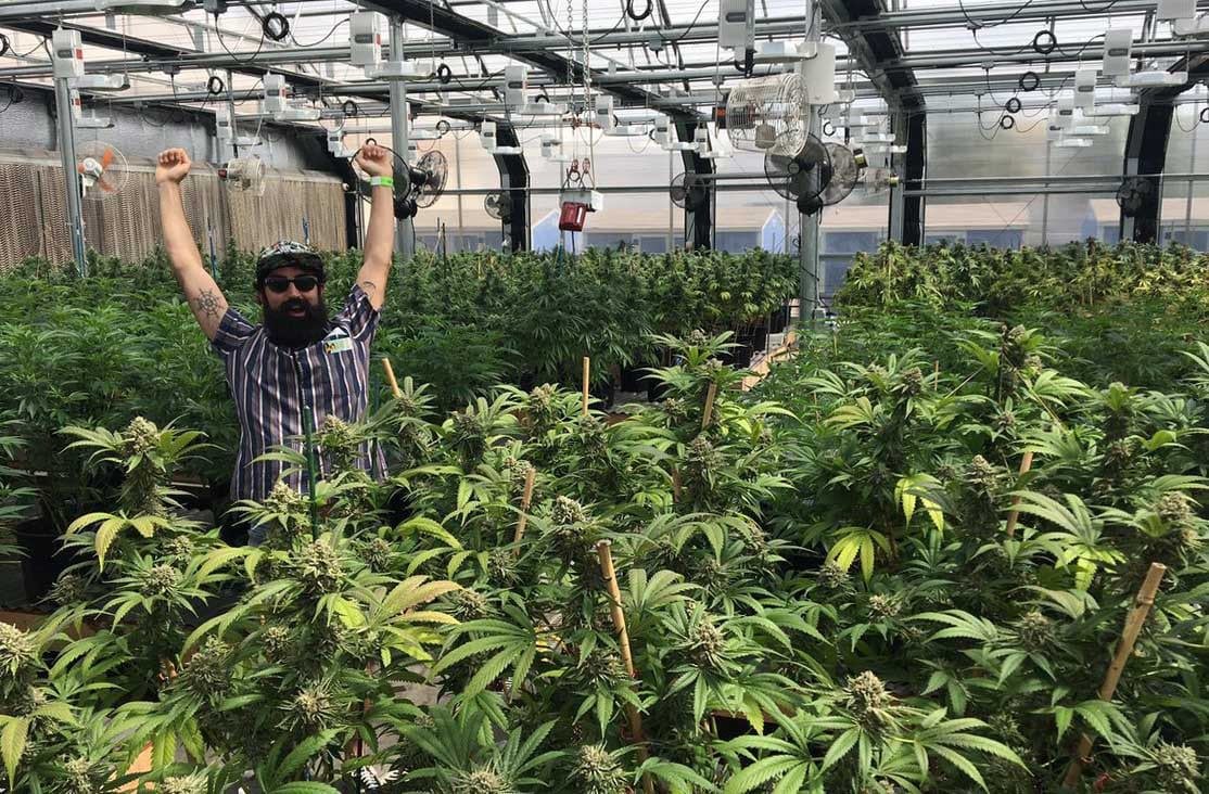 420 Tours Marijuana Grow House Denver