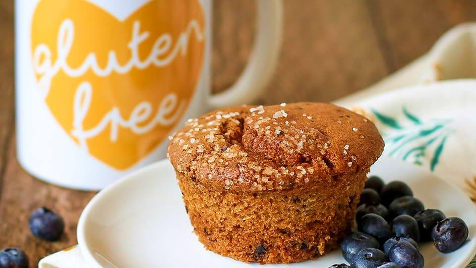 Udi's Gluten Free Blueberry Muffin