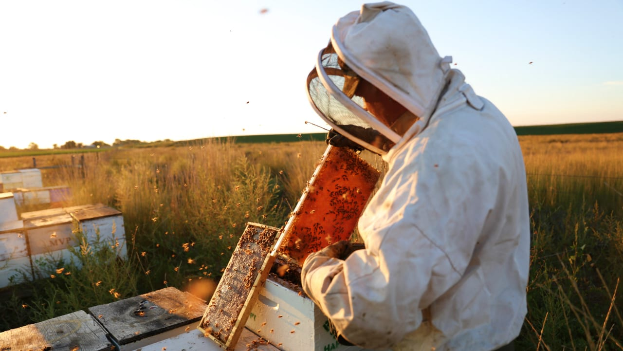 Rice's Honey Beekeeper