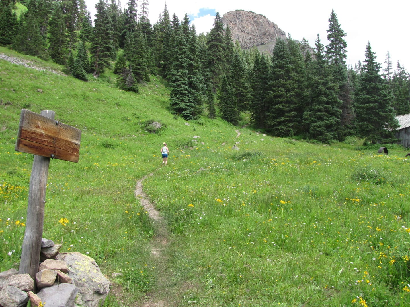 Bear Creek Trail Ouray Runing