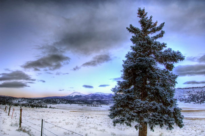 Buffalo Peaks Wilderness Dawn Colorado