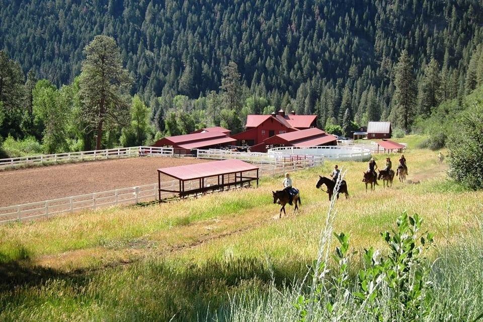 Colorado Trails Ranch Horseback Riding Durango