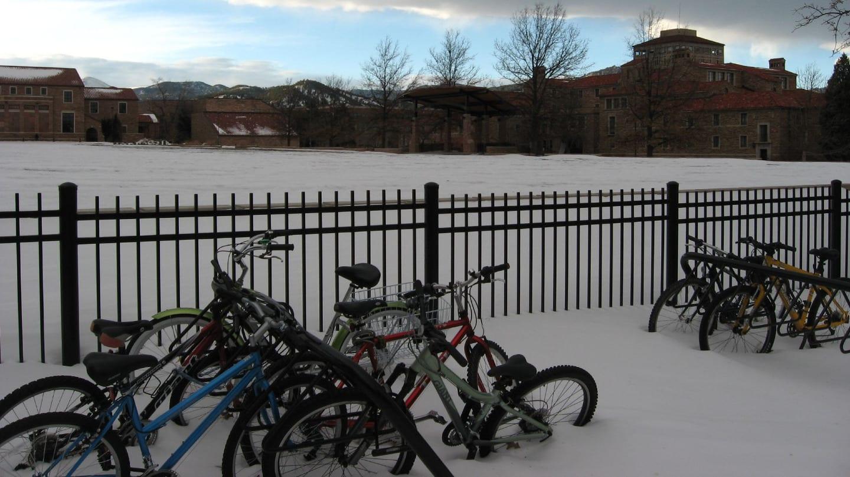 Colorado University Boulder Ferrand Field Bikes