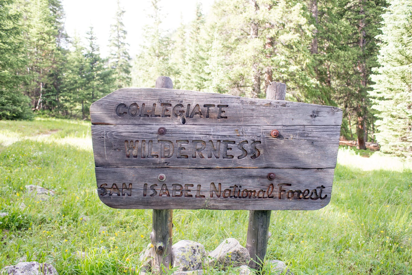 Collegiate Peaks Wilderness Sign Colorado