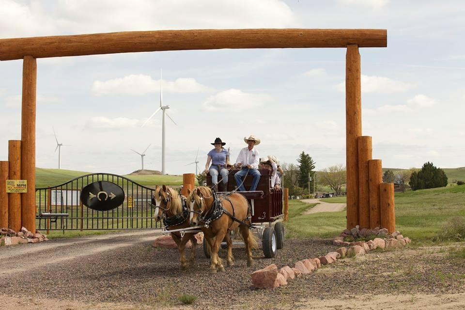 Colorado Cattle Co Horseback Riding Colorado