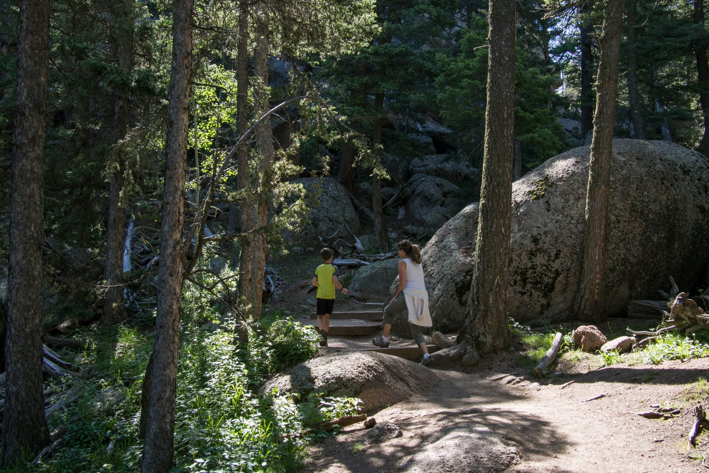 Devil's Head Trail Lookout Steps