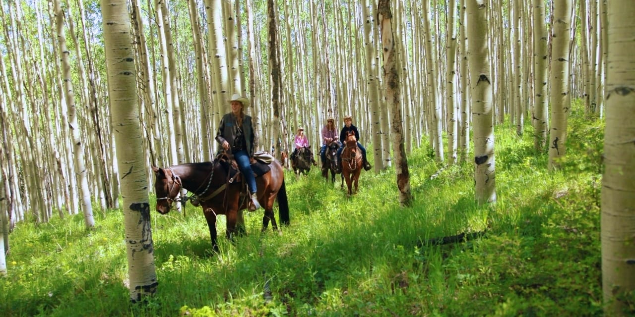 Elk Mountain Ranch Horseback Riding