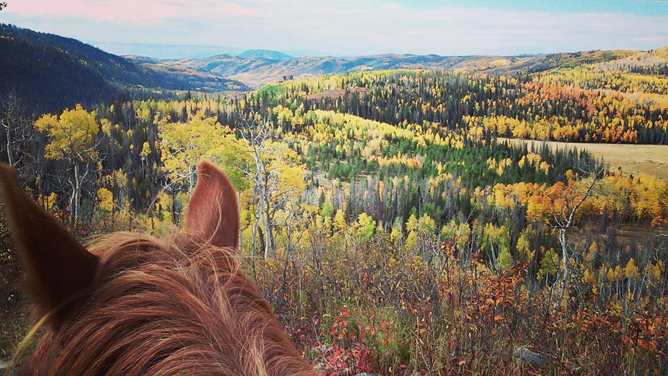 Elk River Guest Ranch Horseback Riding