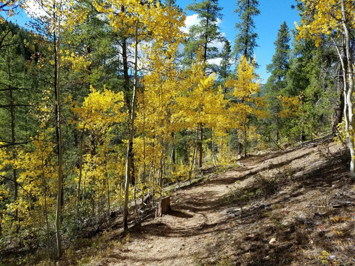 Fossil Ridge Wilderness Autumn Hiking Trail