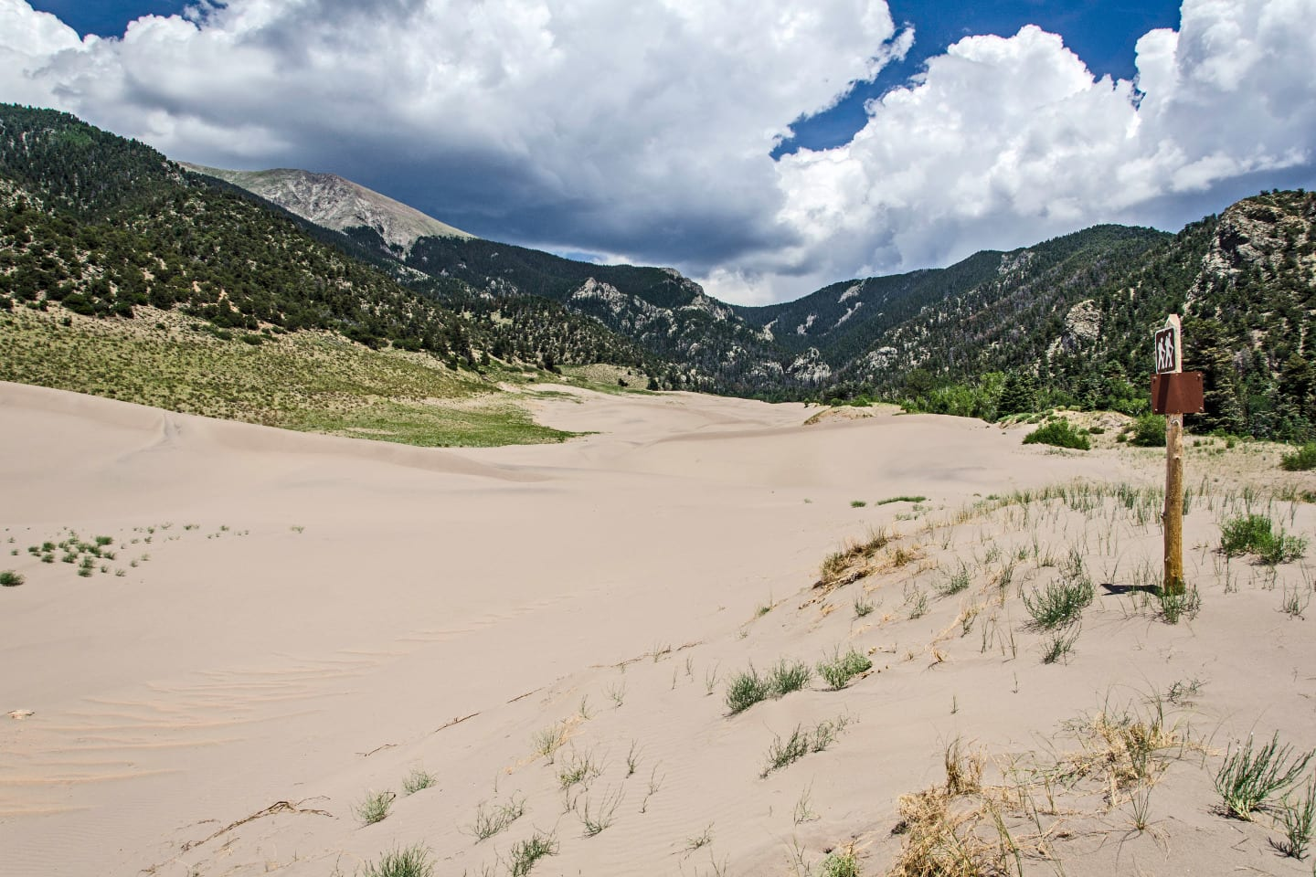 Great Sand Dunes Wilderness Trail Marker