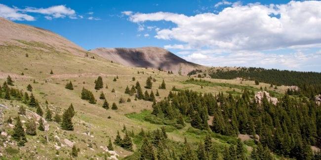 Greenhorn Mountain Wilderness Colorado