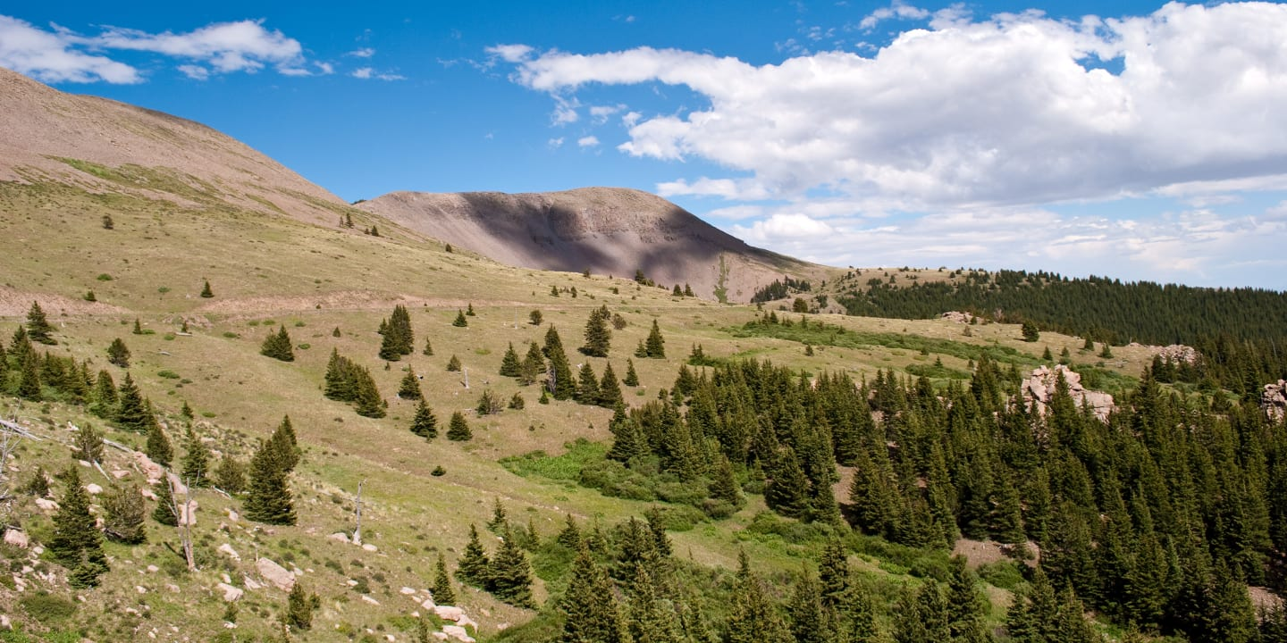 Greenhorn Mountain Wilderness Colorado