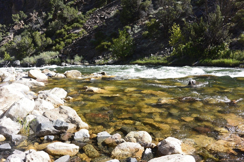 Gunnison Gorge Wilderness River