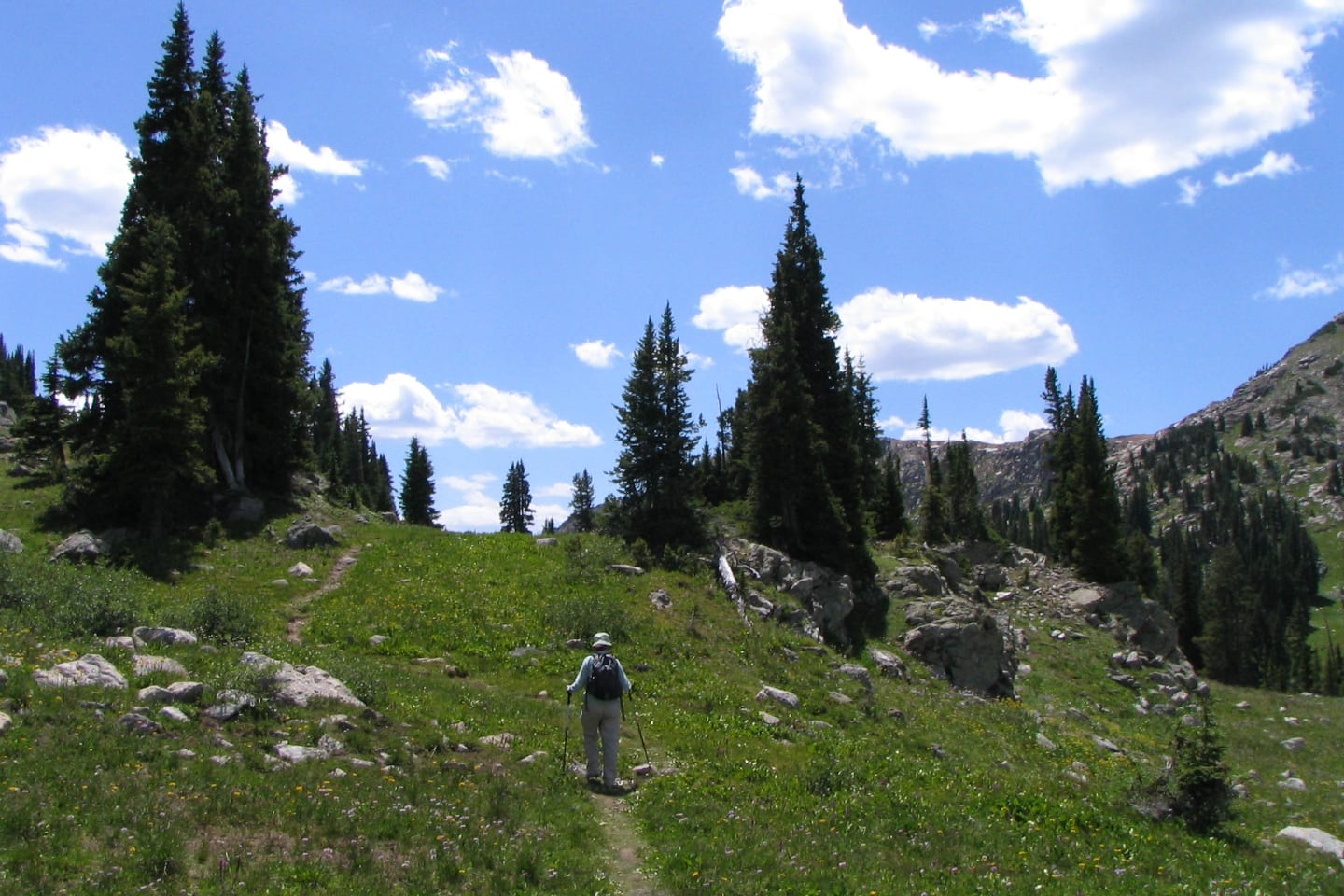Holy Cross Wilderness Hiking Trail