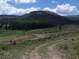La Garita Wilderness Forest Road 787 Colorado