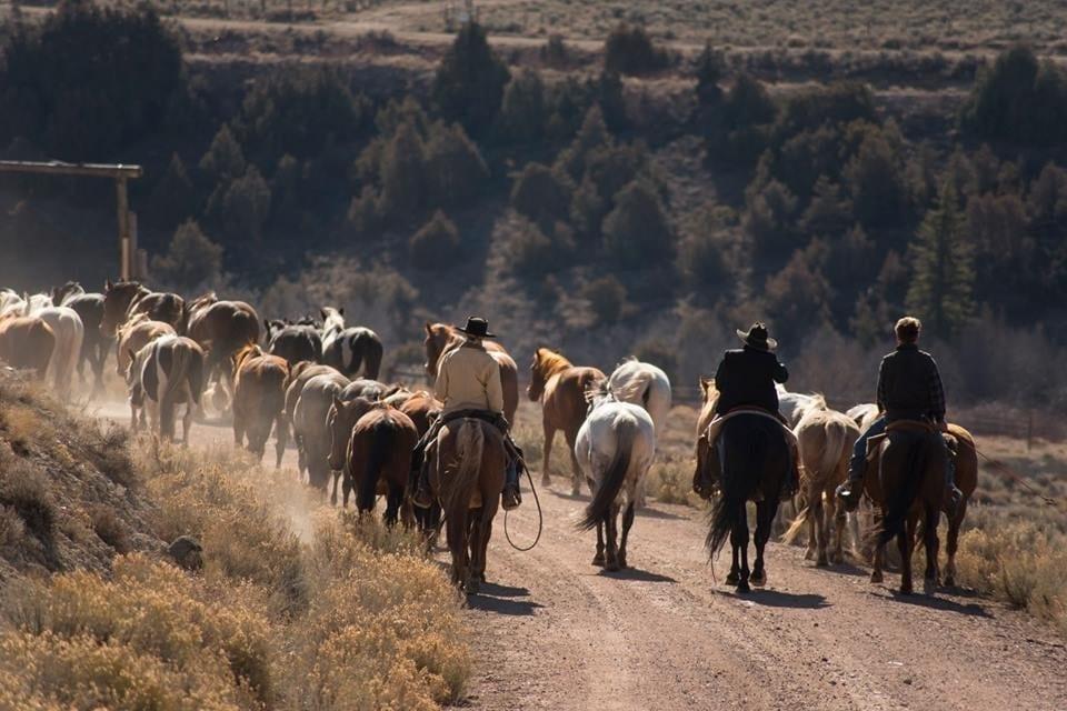 Latigo Ranch Horseback Riding Kremmling