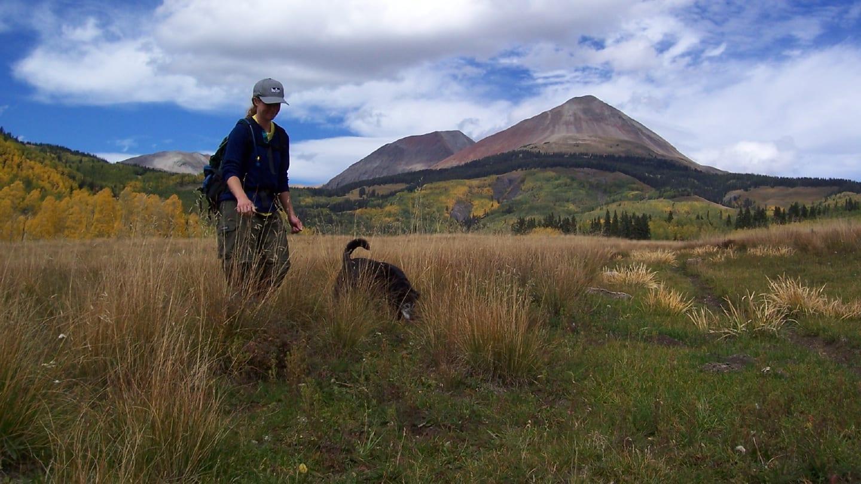 Lizard Head Wilderness Dog Hike