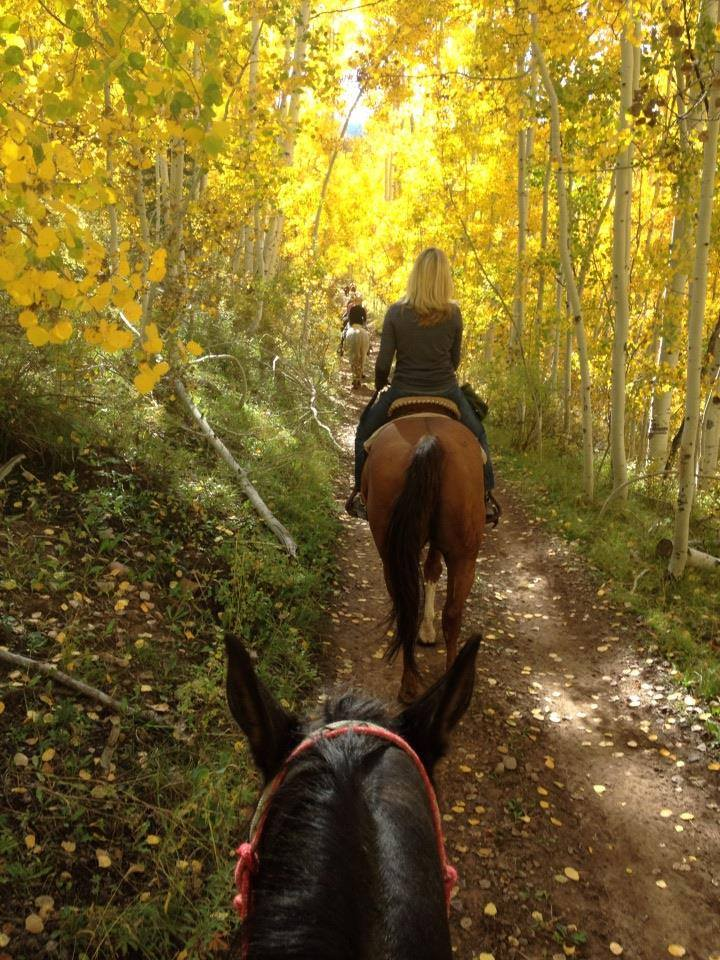 Majestic Dude Ranch Horseback Riding Mancos
