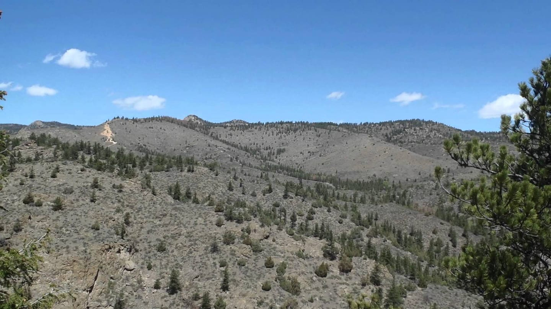 Mount McConnel Trail Colorado
