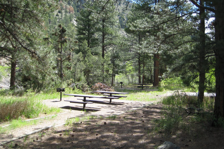 Mount McConnel Trail Picnic Area