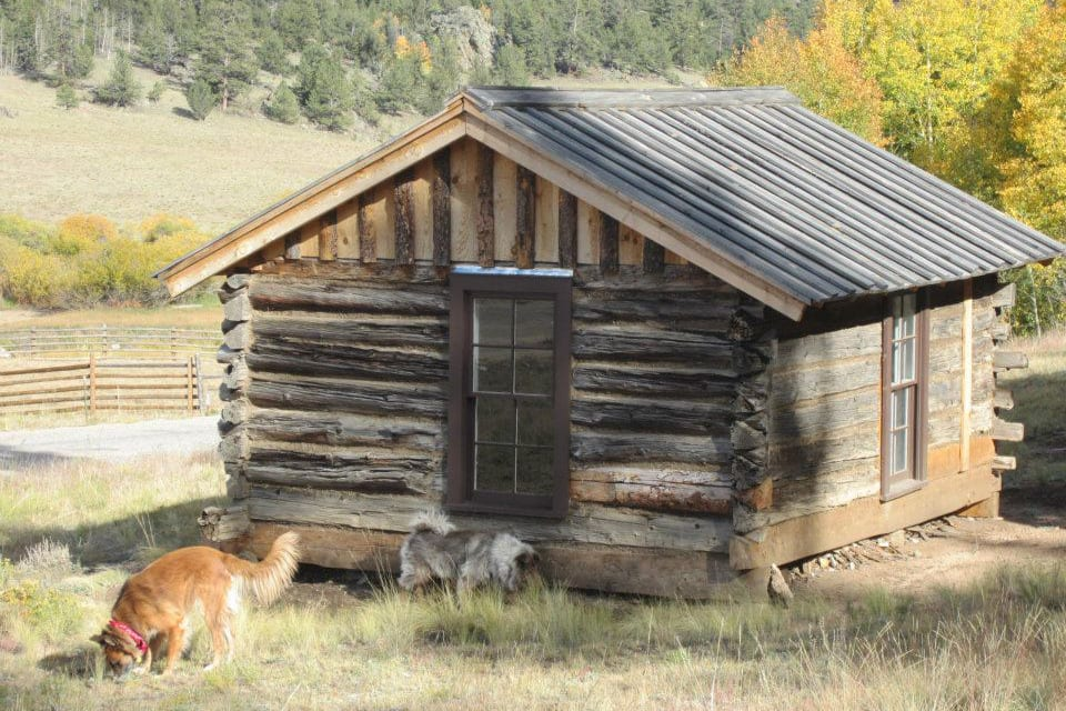 Tarryall River Ranch Cabin