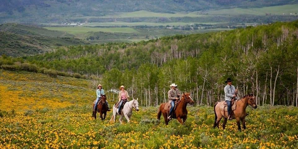 Home Ranch Clark Horseback Riding