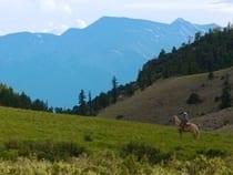 Elk Mountain Ranch Buena Vista
