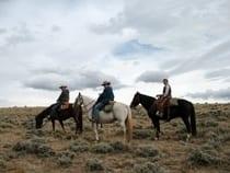 Laramie River Ranch Jelm