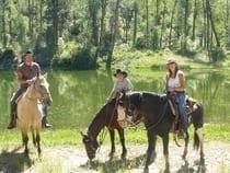 Majestic Ranch Mancos