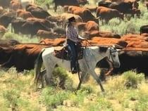 Zapata Ranch Mosca