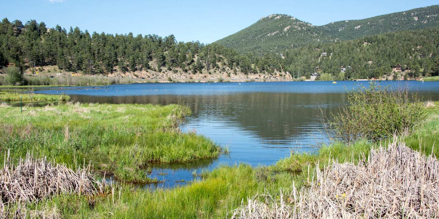 Evergreen Lake Marshlands Colorado